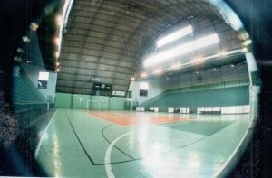 Sport 85